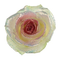 Avalanche Bling Bling Red Rose