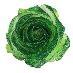 Avalanche Crystal Look Green Rose