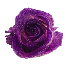 Avalanche Crystal Look Purple Rose