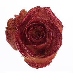 Avalanche Crystal Look Red Rose
