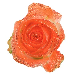 Avalanche Glitter Look Orange Rose