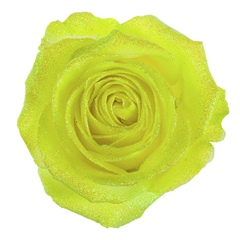 Avalanche Glitter Look Yellow Rose