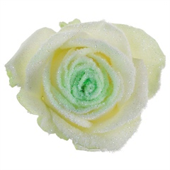 Avalanche Snowy Mountain Green Rose