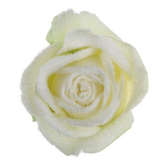 Avalanche Snowy Mountain White Rose